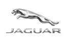 Jaguar Brillen